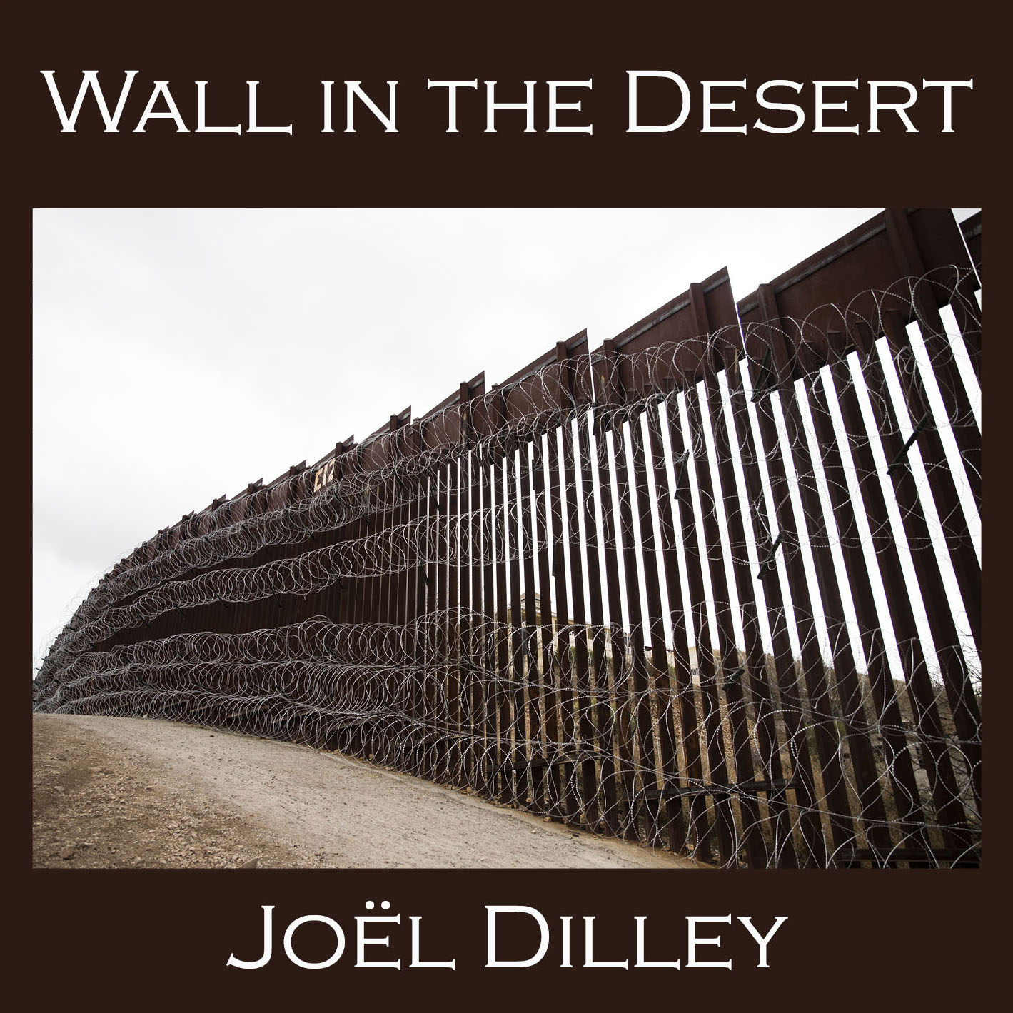 Wall in the Desert